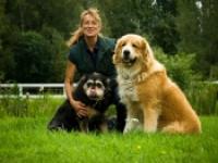 Brigitte Bohl - Tierheilpraktikerin, Zufütterung von Hundehanf