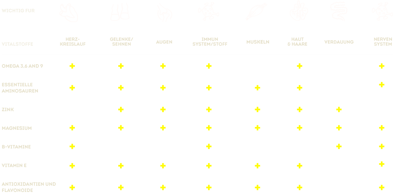 Vorteile von Hundehanf tabellarisch dargestellt